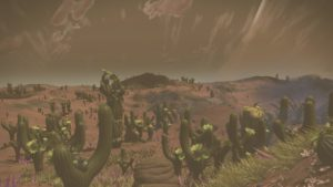 Dusty-looking reddish desert covered by generic cacti.